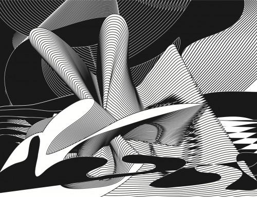Transcape, 2004