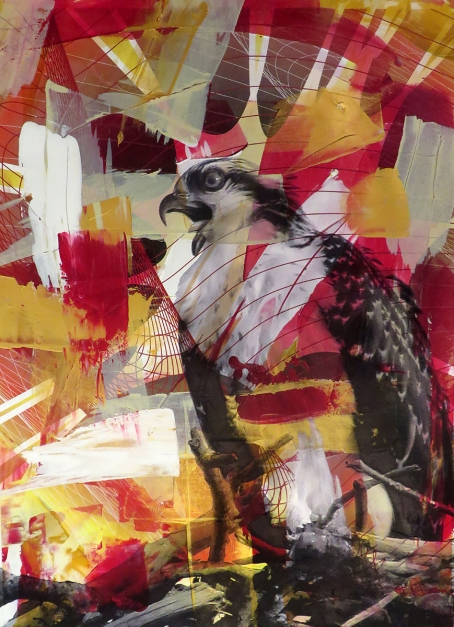 Colin Goldberg, Red Osprey #1, 2015. Acrylic and pigment print on Rives BFK paper. 29 x 21 inches.